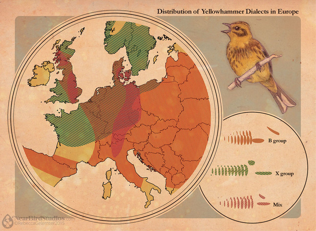 Yellowhammer Dialect Map