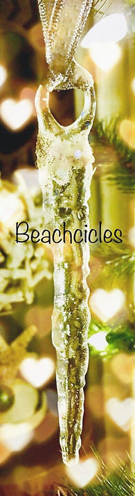 Beachcicles_edited.jpg