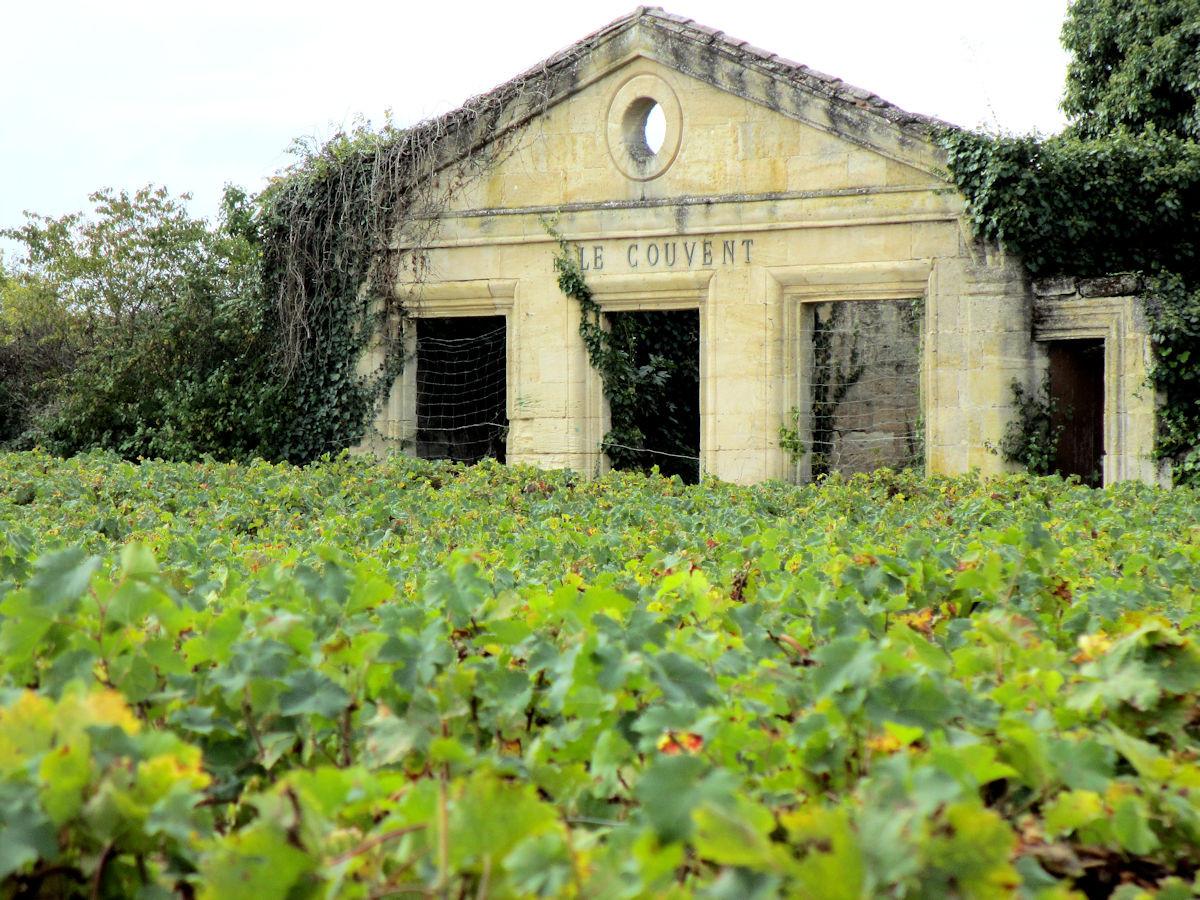 Vineyard-St-Emilion.jpg