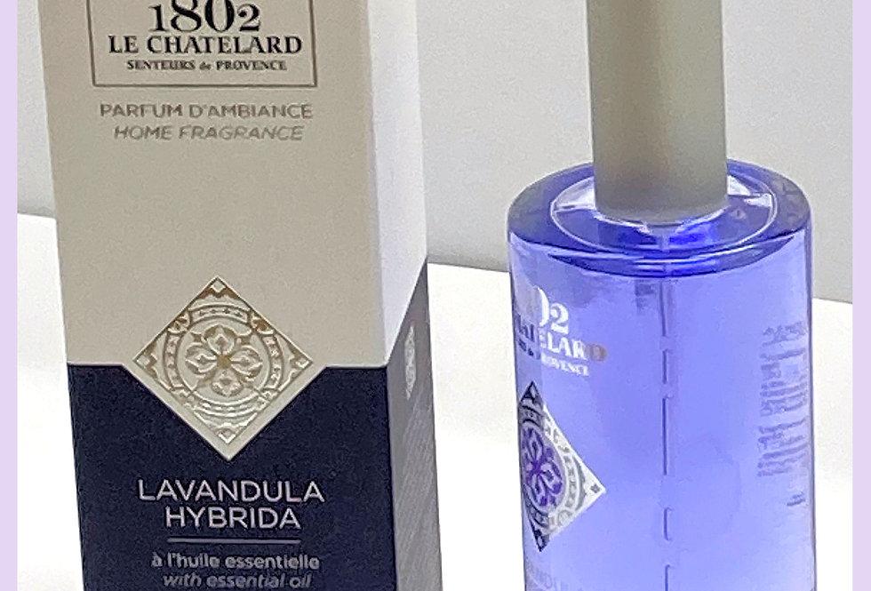 French Lavender Room Spray/Freshener