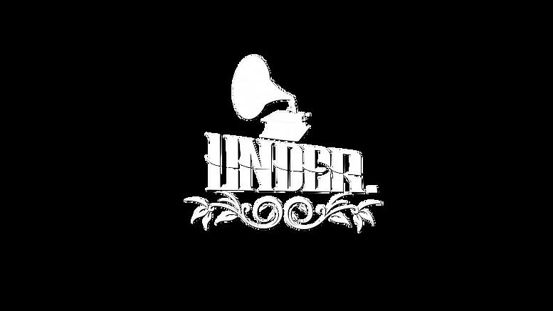 Under logotype niice wshadow.png