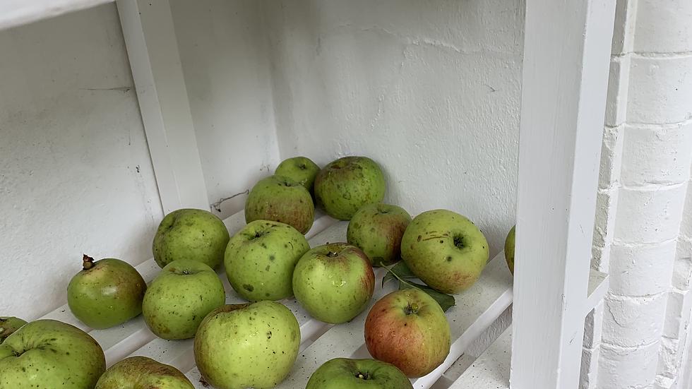 Organic Apple & Oat Crumble