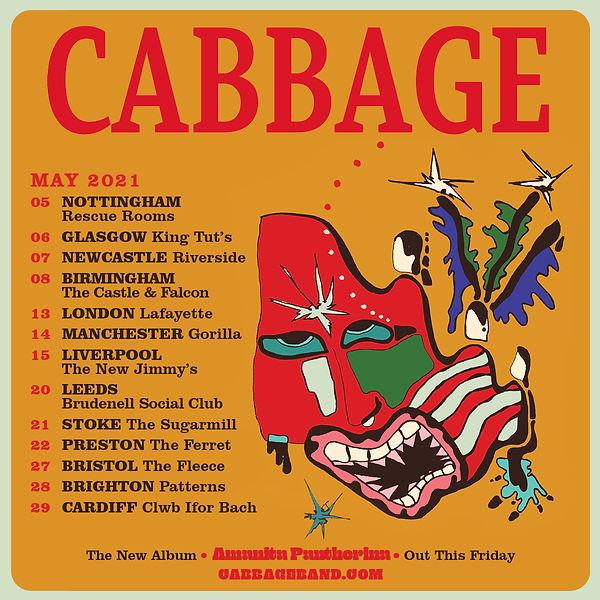 Cabbage SQ (Nat)_3 (1).jpg