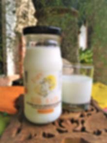 milk kefir 1.jpg