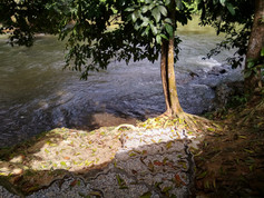 river langat.jpg
