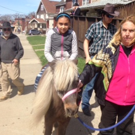 Why are we having a pony ride?