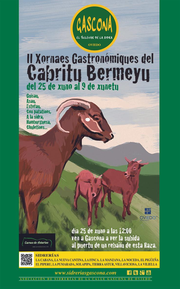 cartel Bermeyu 2015.jpg
