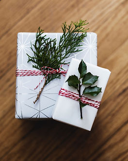 two%20green%20leaves%20on%20white%20card