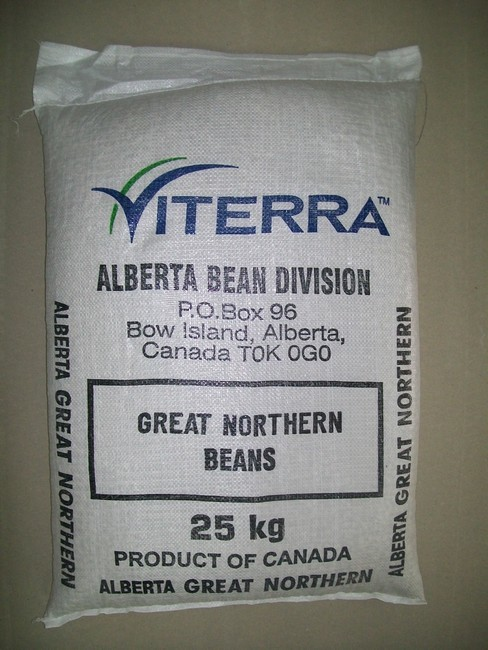 alberta beans northen