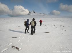 Vers le Mont des Lichens (99)