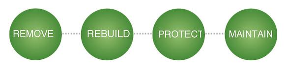Remove-Rebuild-Protect-Maintain