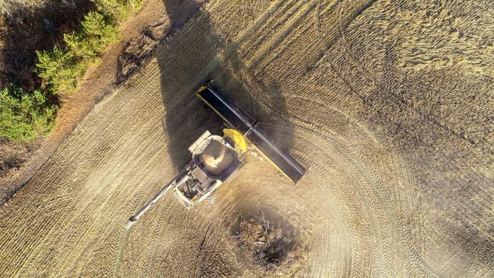 Harvest 2019 Drone Photo