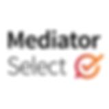 MediatorSelect.com testimonial for Lia Blanchard, writer