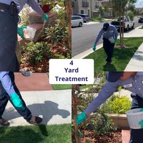 yard_pest_control_service_with_granules_