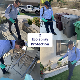 pet_safe_eco_friendly_pest_control_servi