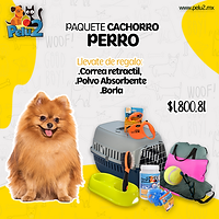 Paquete cachorro perro.png