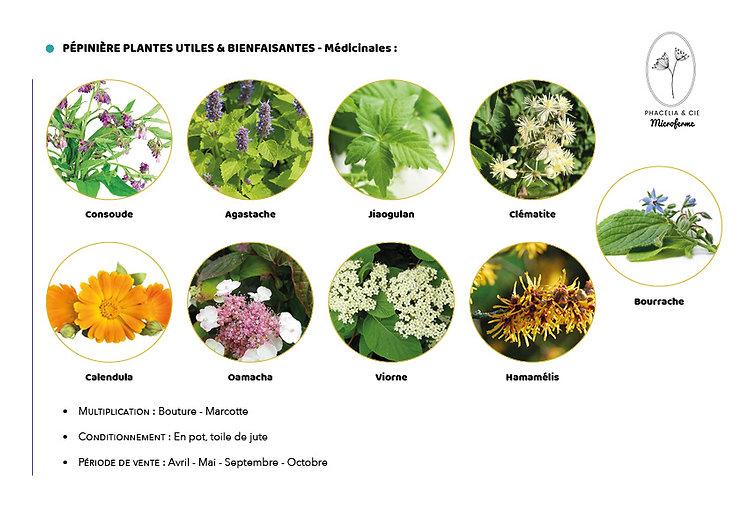 Catalogue-Medicinale.jpg