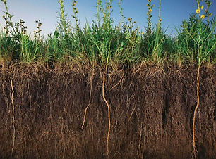 terres-arables-restaurer-richesse-des-so
