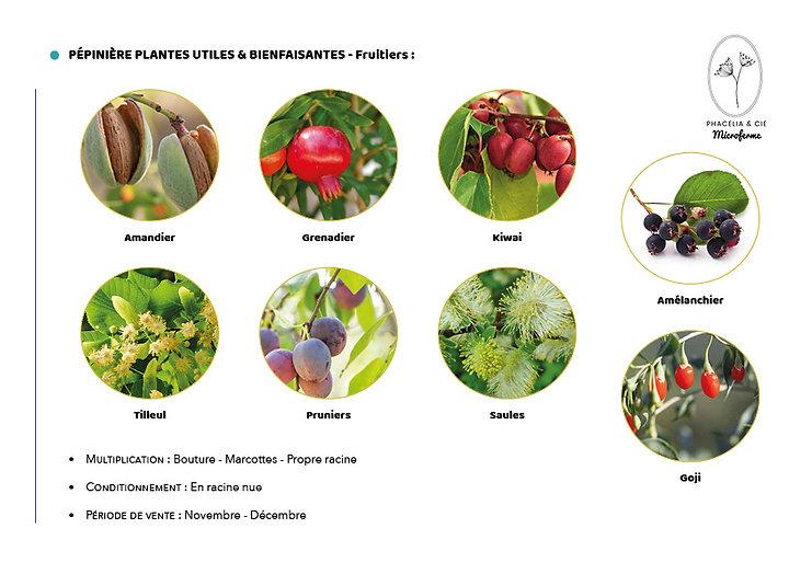 Catalogue-Fruitier.jpg