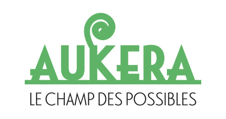 Aukera - Le champ des Possible