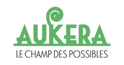 Aukera - Le champ des Possible