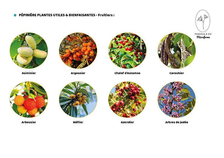 Catalogue-Fruitier2.jpg