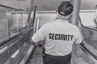 security-869216_1280_edited.jpg