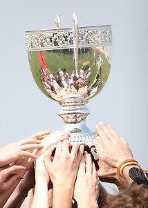 champions-1411861_1920.jpg