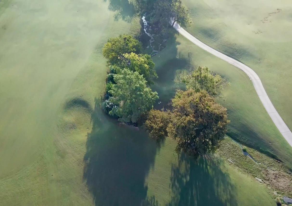 Golf Trailer