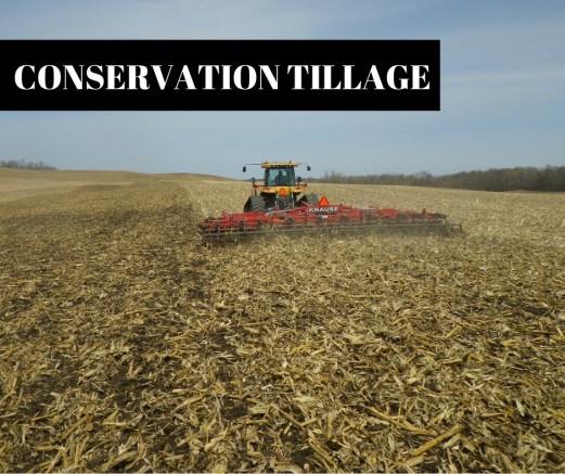 Tractor tilling field.