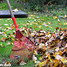 Fall Tips for a Healthy Lawn and Clean Water