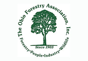 Forestry camp logo