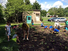 Hopewell Elementary planting