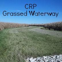 CRP grassed waterway