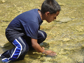 Kids: Discover Creek Critters