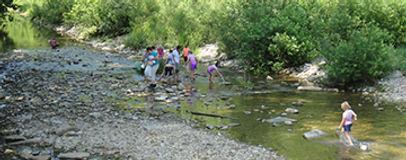 field trip at creek