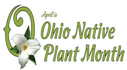 April is Ohio Native Plant Month