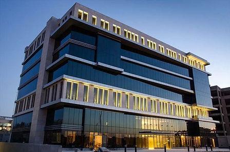 raya-offices-land-no-133-banking-sector-