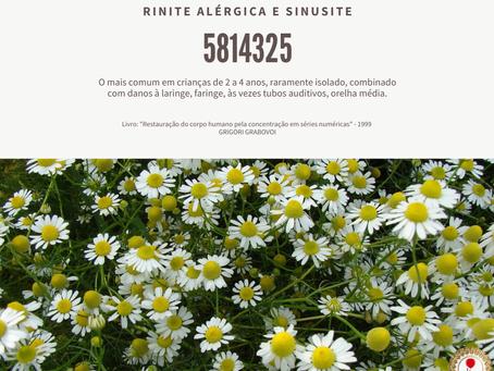 Rinite Alérgica e Sinusite