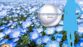 ENERGIA 818918888841498 -              GRIGORI GRABOVOI
