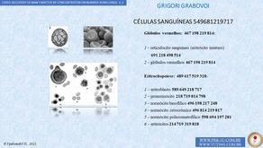 CÉLULAS SANGUÍNEAS - 549681219717  -                    GRIGORI GRABOVOI