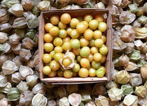 Our Best-Kept Secret Fruits and Veggies