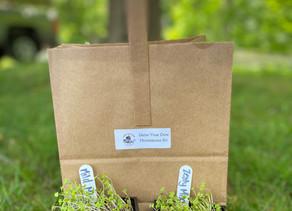 DIY Microgreens Kit Instructions, Tips, & Recipes