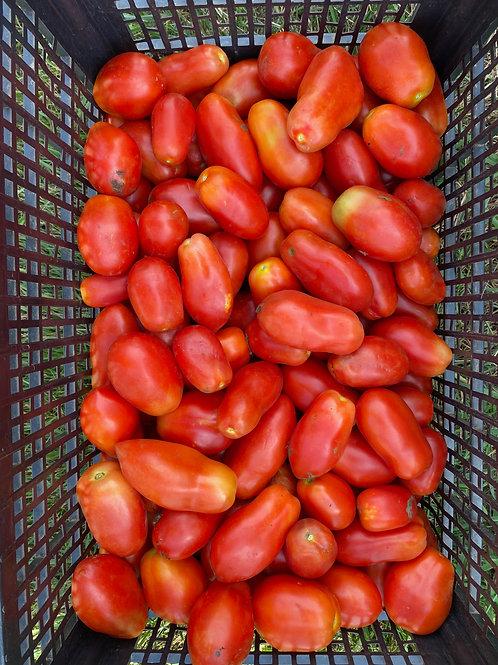 25 lbs. of Plum Tomatoes