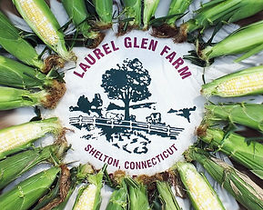 corn with logo.jpg