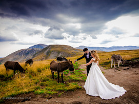 Sedinta foto - Transalpina   After Wedding
