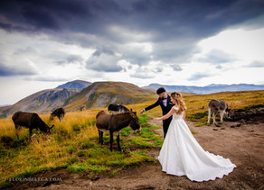 Sedinta foto - Transalpina | After Wedding