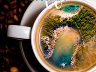Coffee%20Magazine%20Cover%20Template_edi