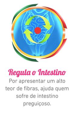 Captura_de_Tela_2020-04-30_às_17.22.57
