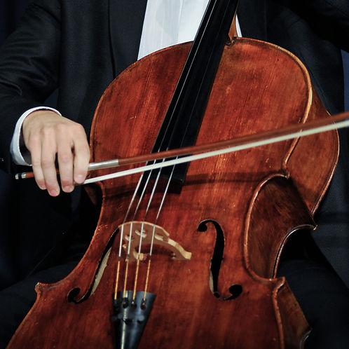 AML Strings Violoncello